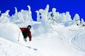 PowderMountainCatskiing.jpg