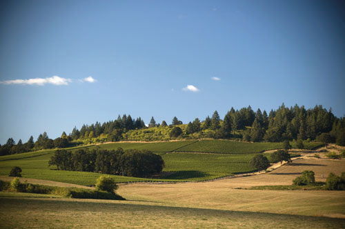 willamette_valley