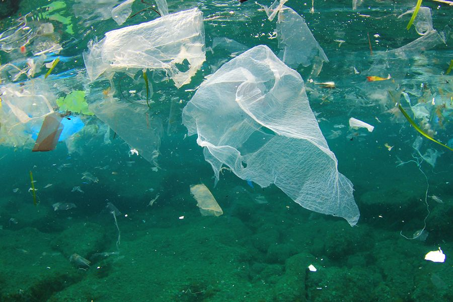 Plastic pollution provides untapped business potential