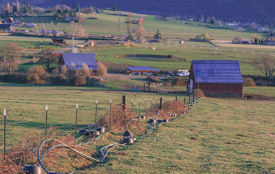 Can agritourism save the farm?