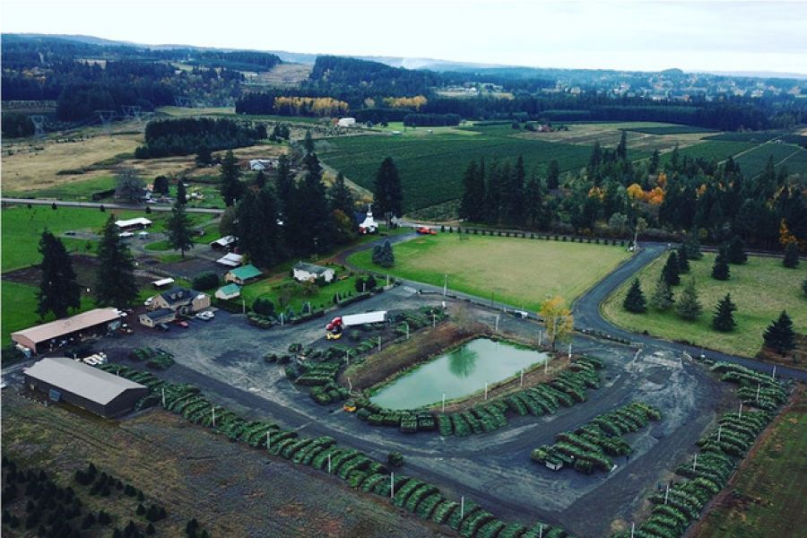 McKenzie Farms from a helicopter aerial view