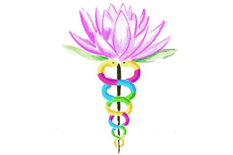 The Wild West of Wellness Coaching